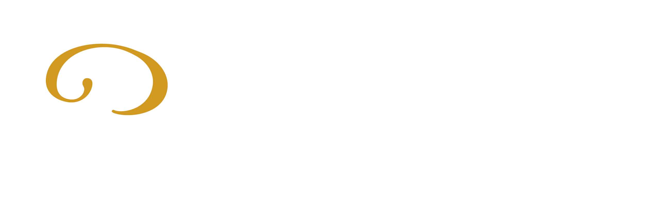 Paul Chan Professional Corporation – Chartered Professional Accountants